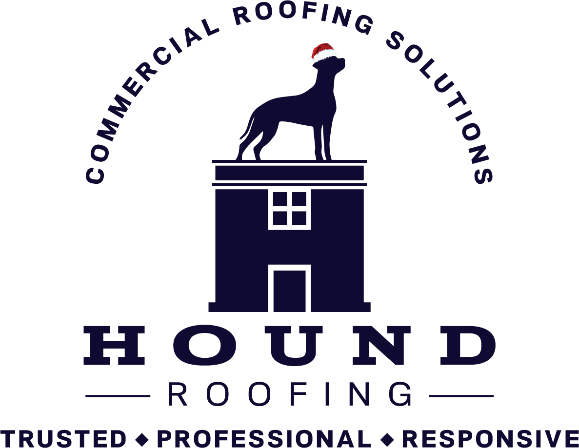 Hound-Roofing Blue Clear Transparent Santa